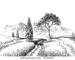 pine trees bushes drawing by pencil stock vector 364448177