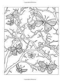 beautiful butterfly designs creative dover coloring book