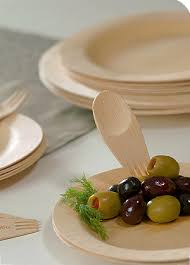 bamboo disposable plates bamboo plates that biodegrade pwn cardboard ones srsly