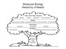 evolutionary philosophy evphil blog