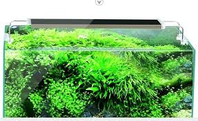 10 gallon planted tank led lighting planted aquarium led lighting ads light for 10 gallon tank best diy