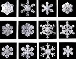 snowflake wilson bentley piet schellekens 245 wilson u0027snowflake u0027 bentley