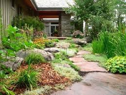 Backyard Xeriscape Ideas Xeriscape Ideas Xeriscape Ideas For Front Yard Findkeep Me