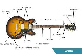 guitar u0027s anatomy parts of an electric guitar coustii