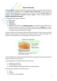test ingresso veterinaria di biologia per i test di ammissione di medicina odontoiatria