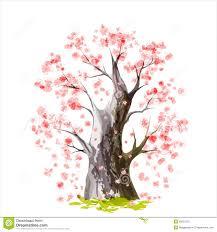 Peinture Cerisier Japonais by Cerisier Japonais De Floraison Image Stock Image 28552701