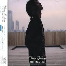 hom photo album the only one leehom wang songs reviews credits allmusic