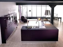 cuisine couleur wengé cuisine couleur aubergine inspirations violettes en 71 idaces
