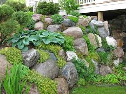 Rock Garden Cground We Need To Plant Ground Cover On And Around The Retaining Walls