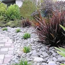 low maintenance landscaping ideas with tropical plants best low