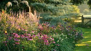 karley grass monrovia karley