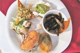 cuisines smith awesome cuisines smith fresh hostelo
