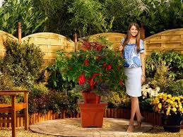 Patio Garden Apartments by Gorgeous Inspiration Patio Garden Brilliant Ideas 1000 Ideas About