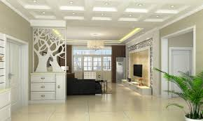 Wall Partition Ideas by Fabulous Partition Living Room Interior Design Tv Wall Partition