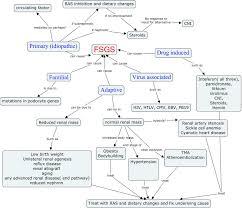 Blood Pressure Map Nephron Power December 2011