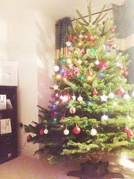 where can i buy a live tree lights decoration