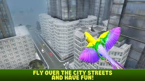 city bird parrot simulator 3d android apps on google play