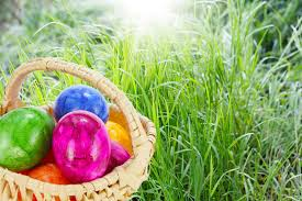 easter basket grass easter basket on grass stock photo image of 35335018