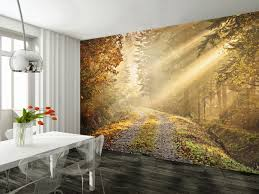 tranquil forest path wall mural forest 002 free paste
