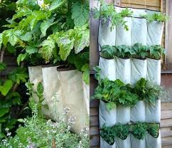 hanging wall garden ideas powers ceramic planters indoor