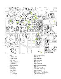 Citrus College Map Map Of All Edible Fruit Trees On Campus The Unofficial Stanford Blog