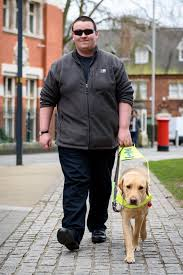 How Does A Guide Dog Help A Blind Person Uber Driver Fined For Refusing To Pick Up Blind Passenger Because