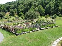home vegetable garden fence decorating clear