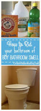 Acid For Bathroom Cleaning Best 25 Boy Bathroom Smell Ideas On Pinterest Cleaning Floors