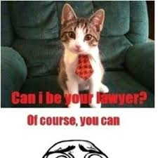 Lawyer Cat Meme - lesson learned never have a cat as a lawyer by gunsmoke meme center