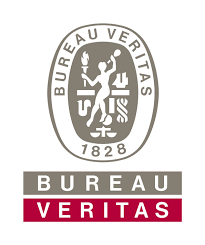bureau veritas benin innovation technology intamin rollercoaster supplier