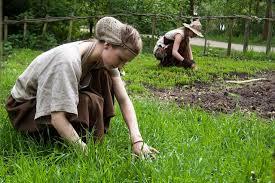 Eco Friendly Garden Ideas Top 5 Wonderful Eco Friendly Gardening Ideas Conserve Energy Future