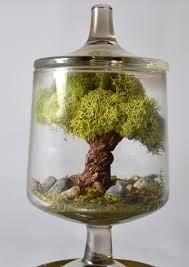 tree terrarium miniature landscape terrarium tree sculpture