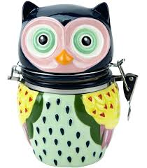 owl kitchen canisters owl canisters for the kitchen or 4 canister set hinged jar