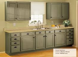 Ivory Colored Kitchen Cabinets - how much does replacing kitchen cabinet doors cost monsterlune rta