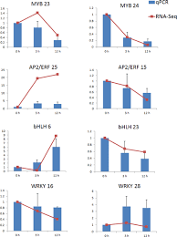deep sequencing reveals the effect of meja on scutellarin