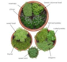 Herb Garden Layout Herb Garden In Containers Bonnie Plants