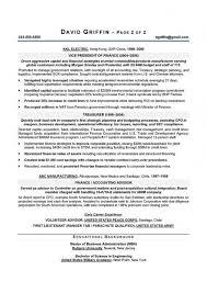 Cfo Resume Template Cfo Resume Examples Resume Example And Free Resume Maker