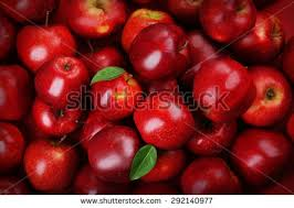 apple red red apples background stock photo royalty free 292140977