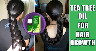 for hair 13 effective ways to use tea tree for rapid hair growth