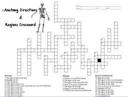 anatomy directions u0026 regions crossword by robin u0027s science store
