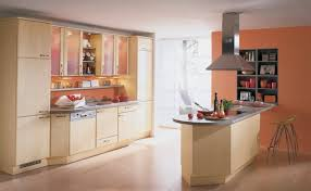 cozy orange wall color and pale beige cabinet for elegant kitchen