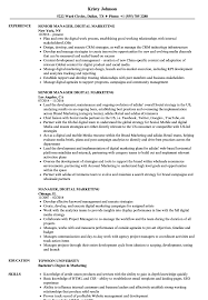 digital marketing resume manager digital marketing resume sles velvet