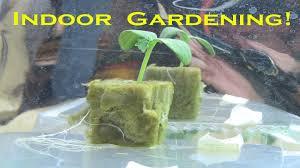 cheap alternative reflective mylar for indoor gardens youtube