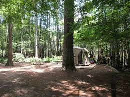 the best campsites to claim at texas state parks san antonio