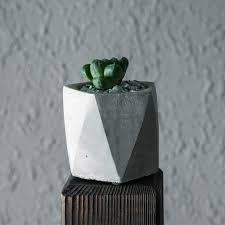 aliexpress com buy full set 6pcs cement flowerpot succulent