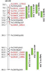 Qtl Mapping Frontiers Fine Mapping Of Qtls For Ascochyta Blight Resistance