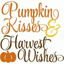 best 25 pumpkin quotes ideas on fall time quotes