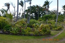 Wonderful Gardens Wonderful Gardens Picture Of Tanna Adventures Accommodation