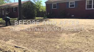 zoysia sod installation project before u0026 after virginia beach