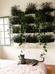39 best herb wall images on pinterest gutter garden vertical